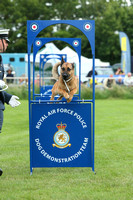 RAF Police Dogs